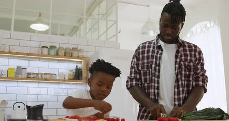 placa : Front view of a millennial african american father and his young son preparing food together in the kitchen at home, the father chopping vegetables and his son putting them on a pizza base, slow motion