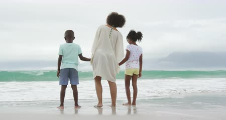 roupa de praia : Rear view of an African American woman standing on a beach facing the sea, holding hands and paddling with her young son and daughter, slow motion Vídeos