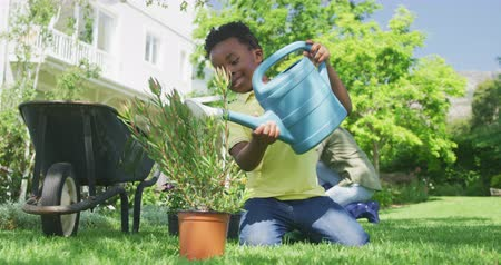 ev hayatı : Front view of a young African American boy in the garden, kneeling on the grass and water a potted plant with a watering can, his mother gardening in the background, slow motion Stok Video