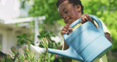 carriola : Front view close up of a young African American boy in the garden, watering a plant with a watering can, slow motion Filmati Stock