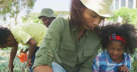 ajoelhado : Front view close up of an African American woman and her young daughter in the garden, kneeling down and gardening together, her young son and husband gardening in the background, slow motion