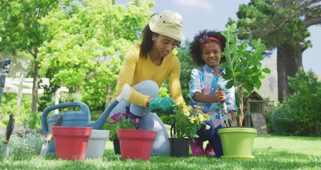 ajoelhado : Low angle front view of an African American woman and her young daughter in the garden, kneeling down and tending to potted plants and smiling, slow motion