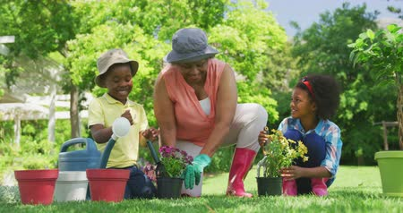 ajoelhado : Front view of a senior African American woman in the garden with her young grandson and granddaughter kneeling down and tending to plants in pots and smiling, slow motion