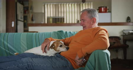 rövid : Side view of a senior Caucasian man relaxing at home in his living room, sitting on the sofa with his legs up playing with his pet dog, slow motion