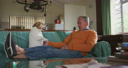 reclináveis : Side view of a senior Caucasian man relaxing at home in his living room, sitting on the sofa with his legs up playing with his pet dog, slow motion