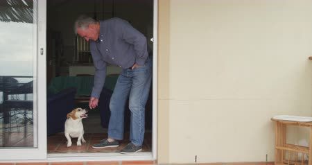 doorway : Side view of a senior Caucasian man relaxing at home, standing in an open doorway and bending down to stroke his pet dog, slow motion Stock Footage