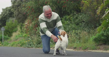 ajoelhado : Front view close up of a senior Caucasian man kneeling down and playing with his pet dog while walking on a quiet, empty road witht trees and bushes in the background, slow motion Vídeos