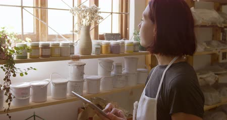 bob hairstyle : Side view of a young Caucasian female potter wearing an apron standing by the window in a pottery studio using a tablet computer, with tubs and pots of glaze on shelves in the background Stock Footage