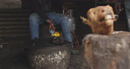 south asian food : Front view of an African male butcher in a township workshop, holding torch burning animal head with an animal head on a stool in the foreground, slow motion Stock Footage