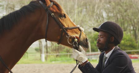 dizgin : Side view of a smartly dressed African American man wearing a riding hat looking at his Dressage horse, holding it by the bridle in a paddock, slow motion