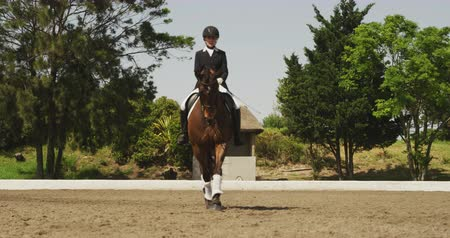 fegyelem : Front view of a smartly dressed Caucasian woman riding a bay horse in a paddock during a dressage competition, slow motion
