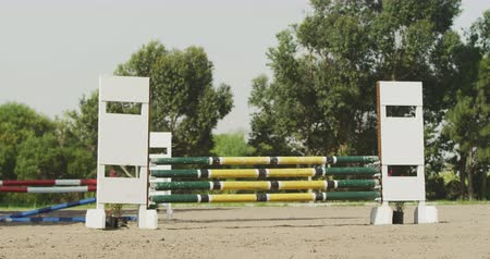generation z : Rear view of smartly dressed African American man riding a chestnut Dressage horse at a show jumping event, jumping a fence, slow motion Stock Footage