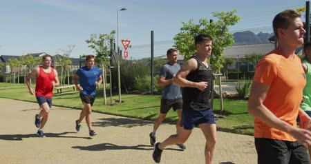 undefined : Side view of a multi-ethnic group of male runners training at a sports field, running together on a path. Track and Field Sports Training in Stadium, in slow motion