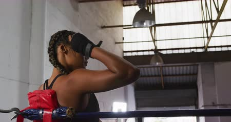 narożnik : Side view of a mixed race female boxer with plaited hair and with hands wrapped, at a boxing gym, sitting in the corner of a boxing ring and looking away, resting after training, slow motion