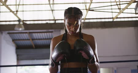 focussed : Portrait of a mixed race female boxer with long, plaited hair wearing boxing gloves, at a boxing gym, looking to camera and banging her gloves together, slow motion Stock Footage