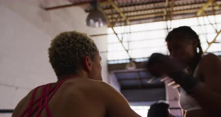 поражение : Side view close up of a mixed race female boxer with long, dark plaited hair knocking out her opponent, a mixed race female boxer with short curly hair, in a boxing ring at a boxing gym, backlit, slow motion