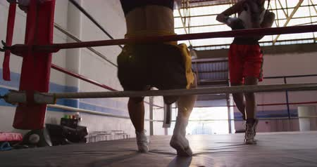 поражение : Front view of a mixed race female boxer with long, dark plaited hair knocking out her opponent, a mixed race female boxer with short curly hair, in a boxing ring at a boxing gym, backlit, slow motion
