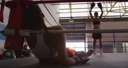 поражение : Rear view close up of a mixed race female boxer with long plaited hair lying against the ropes in a boxing ring after being hit by her opponent, who is dancing and raising her gloves in victory on the other side of the ring, slow motion Стоковые видеозаписи