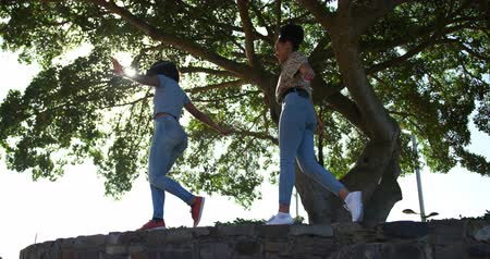 companionship : Low angle side view of two mixed race women enjoying free time in a urban park on a sunny day together, walking on the wall, slow motion
