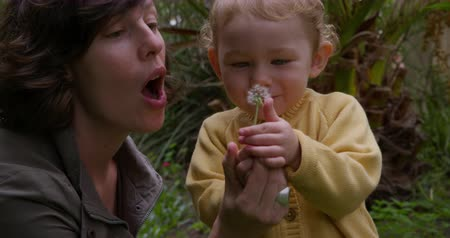 egyetlen virág : Side view of a Caucasian woman enjoying family time in nature, the baby girl blowing a dandelion in slow motion