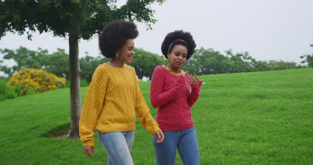 companionship : Side view of two mixed race women enjoying free time in a park side by side, walking and talking, in slow motion Stock Footage