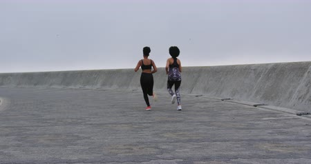 amizade : Rear view of two mixed race women enjoying free time by the seaside, running side by side, in slow motion Stock Footage