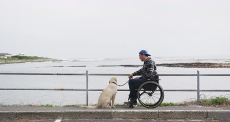 逆境 : Side view of a Caucasian man in a wheelchair enjoying taking a walk with his dog in the countryside by the sea in slow motion