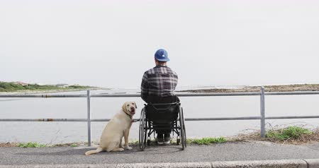 paraplegic : Rear view of a Caucasian man in a wheelchair enjoying taking a walk with his dog in the countryside by the sea in slow motion Stock Footage