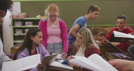 secundaria : Front view of a multi-ethnic group of high school teenage male and female school pupils in a classroom studying and working together, in slow motion Archivo de Video