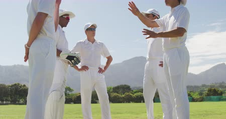 amontoado : Low angle side view of a group of teenage multi-ethnic male cricket players wearing whites, standing on a cricket pitch, discussing the game during a sunny day, in slow motion