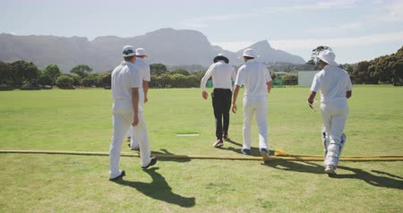 cricket pads : Rear view of a group of teenage multi-ethnic male cricket players wearing whites, walking on a cricket pitch, one throwing a cricket ball to another, discussing the game on a sunny day, in slow motion Stock Footage