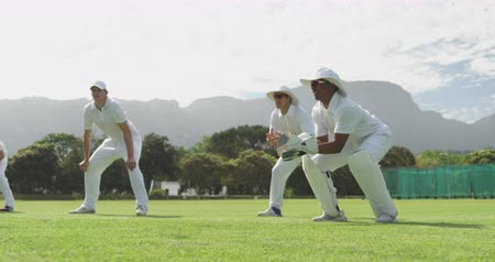 wicket : Side view of a group of teenage multi-ethnic male cricket players wearing whites, squatting on a cricket pitch, waiting and catching the ball during a match on a sunny day in slow motion Stock Footage
