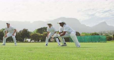 wicket : Side view of a group of teenage multi-ethnic male cricket players wearing whites, squatting on a cricket pitch, waiting and catching the ball during a match on a sunny day, in slow motion Stock Footage