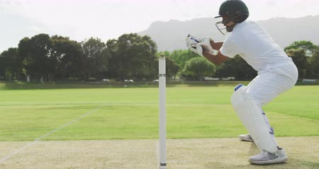 cricket pads : Side view of a teenage African American male cricket player wearing whites, helmet and gloves, playing wicket keeper position on the pitch during a cricket match, squatting, catching a cricket ball and celebrating, in slow motion Stock Footage