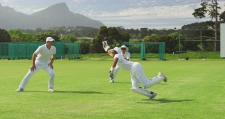catch : Front view of an Asian male cricket player wearing whites, squatting on a cricket pitch, diving for the ball, failing to catch it during a match on a sunny day in slow motion