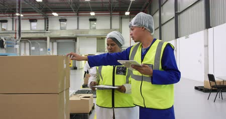 caixa de ferramentas : Side view of focused mixed race male and female workers working in a busy factory warehouse, wearing hair nets and high visibility vests, checking cardboard boxes for delivery, holding a clipboard and using a tablet computer, in discussion together
