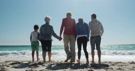 unokája : Rear view of a happy multi-generation Caucasian family enjoying free time on the beach together, holding hands and walking towards the sea with sea and blue sky in the background in slow motion Stock mozgókép