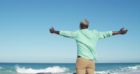 emelt : Rear view of a senior African American man standing on the beach with blue sky and sea in the background, raising his arms, looking out to sea in slow motion