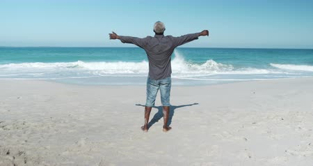 braços levantados : Rear view of a senior African American man standing on the beach with blue sky and sea in the background, raising his arms, looking out to sea admiring the view in slow motion