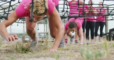 baixo ângulo : Low angle front view of two happy Caucasian women wearing pink t shirts enjoying exercising at boot camp together, crawling under a net, while other women wait for their turn in the background, in slow motion