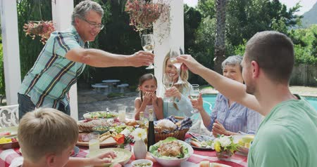 vychovávat : Side view of a multi-generation Caucasian family having a good time together, sitting in a garden, by a table with food on it, the adults are raising their glasses, making a toast, on a sunny day, in slow motion