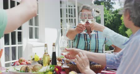 vychovávat : Side view close up of a multi-generation Caucasian family having a good time together, sitting in a garden, by a table with food on it, the adults are raising their glasses, making a toast, on a sunny day, in slow motion Dostupné videozáznamy