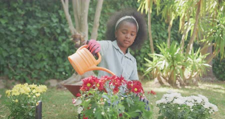 konewka : Front view of an African American girl having a good time in a garden, watering just planted flowers, on a sunny day, in slow motion