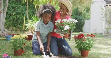 carriola : Front view of an African American woman having a good time in a garden, kneeling, planting flowers with her daughter, laughing, on a sunny day, in slow motion