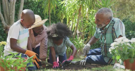 bliskosc : Front view of a multi-generation multi-ethnic family having a good time in a garden, kneeling, planting flowers, digging in the ground with shovels and a rake, on a sunny day, in slow motion Wideo