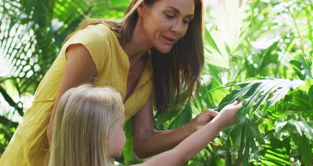 experiência : Side view of a Caucasian woman and her daughter enjoying time together in a sunny garden, looking at plants together and touching their leaves, in slow motion