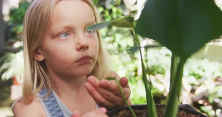 um : Front view of a focused Caucasian girl with long blonde hair enjoying time in a sunny garden, exploring, touching leaves of plants and lookinbg at them closely, in slow motion