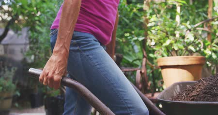 el arabası : Side view mid section of a Caucasian woman, wearing a blue jeans and a pink t shirt, pushing a wheelbarrow in a sunny garden, clay pots with plants in the background, in slow motion