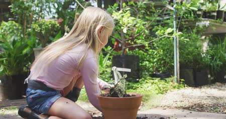 beplanting : Side view of a focused Caucasian girl with long blonde hair enjoying time in a sunny garden, exploring, planting a seedling in a pot, using garden fork, in slow motion