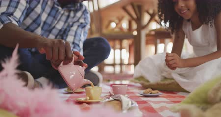 плюшевый мишка : Front view of an African American man and his mixed race daughter enjoying time at home together, sitting on a floor in a sitting room, having a dolls tea party, a man is pouring tea into a cup in slow motion